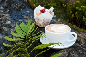msl-cafe-coffee-muffin