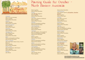 Planting Guide October page 1