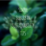 SIMPLESUBURBANSUSTAINABILITYTIPS SLIDE